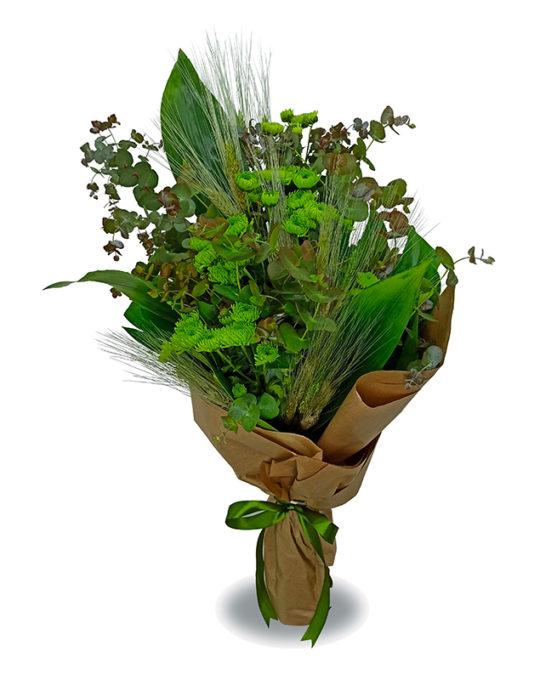 Green-Heaven-Bonsai-Flowers-Plants