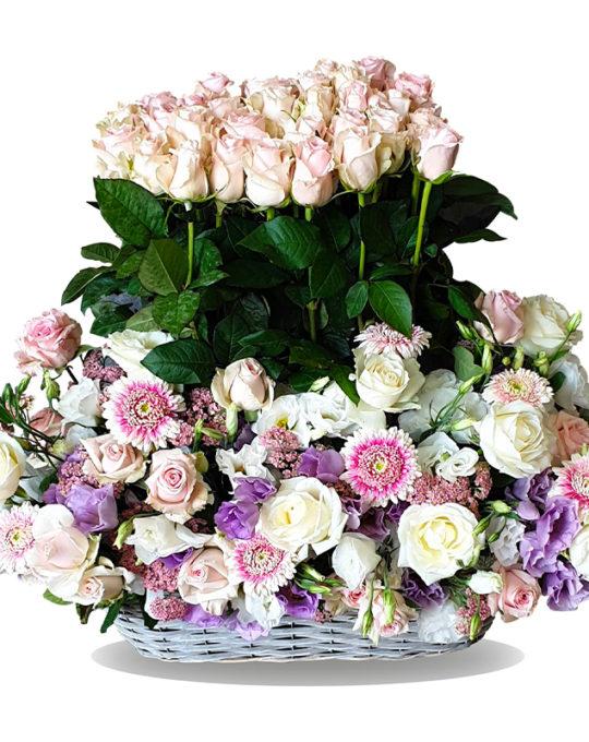 Pink-Field-Bonsai-Flowers-Plants
