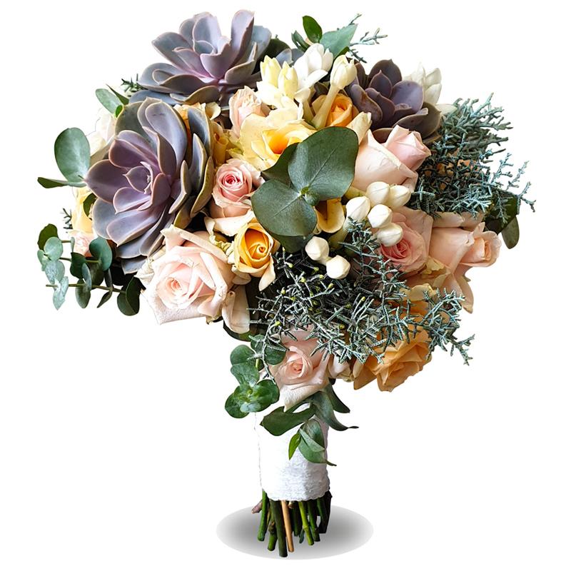Succulant-Touch-Bonsai-Flowers-Plants