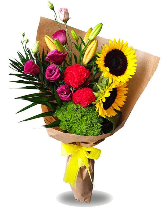 Sunny-Morning-Bonsai-Flowers-Plants