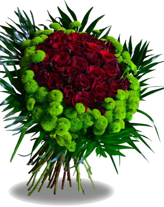 Green-Halo-Bonsai-Flowers-Plants