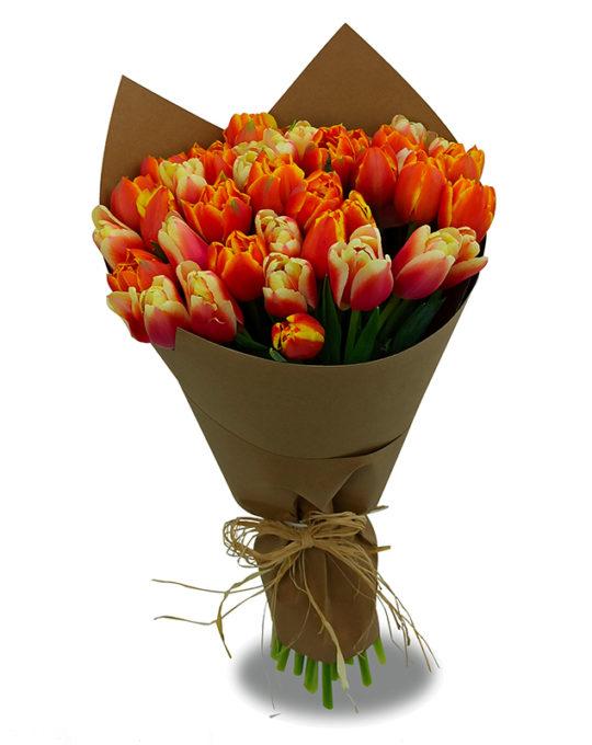 In-Blooms-Bonsai-Flowers-Plants