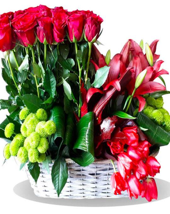 Love-Everyday-Bonsai-Flowers-Plants