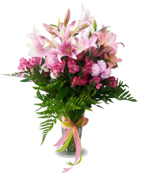 Tropical-Elegance-Bonsai-Flowers-Plants